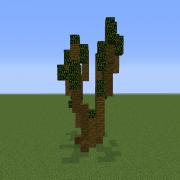 Desert Tree 1