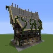 Fantasy Town Hall
