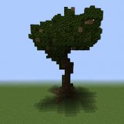 Huge Natural Tree 1