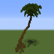 Large Realistic Palm Tree 3