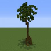 Realistic Palm Tree 4