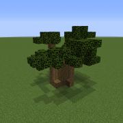 Savanna Baobab Tree 5
