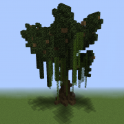Willow Tree 4